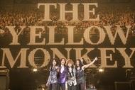 THE YELLOW MONKEY 12月に東京ドーム2days開催、新曲「ロザーナ」ティザー映像も公開