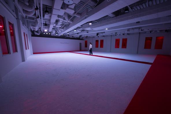 大巻伸嗣 / Shinji Ohmaki《Echoes - Genius Loci》2017 Material: felt, crystal pigments, mirror, acrylic, etc  (c)Size: w16 × d13 × h3.2 (m)   Photo: Ken KATO
