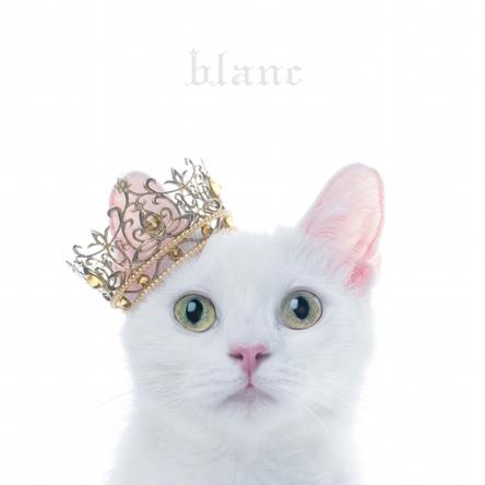 """オリコン週間アルバムランキング初登場3位を獲得した、""""Aimer""""のベストアルバム『BEST SELECTION """"blanc""""』"""