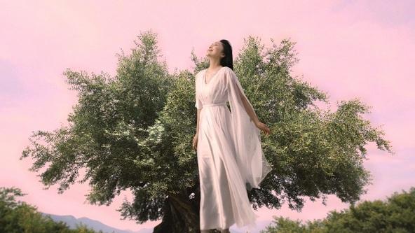 石川さゆりさん起用「ジ・オリーヴオイル(美容オイル)」新CM  9月10日(月)から放映 (1)
