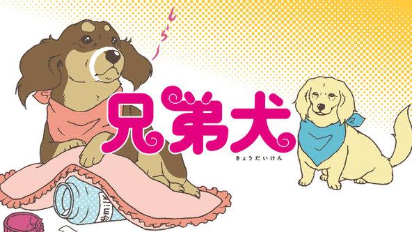 凸凹ダックス兄弟のほのぼの生活♪『兄弟犬』(ともえ)、コミックDAYSでの連載掲載スタート! (1)