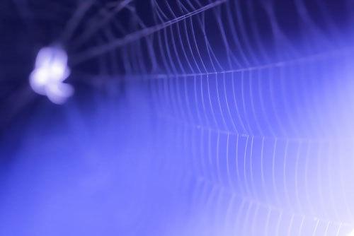 【金曜ロードショー】アクション影像美「アメイジング・スパイダーマン2」