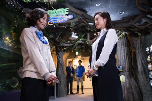 松岡茉優主演「水族館ガール」第5話 (c)NHK