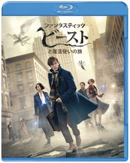 『ファンタスティック・ビーストと魔法使いの旅』が洋画作品1年7カ月ぶりの総合DVD&BD同時首位獲得