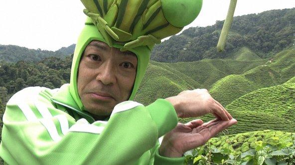 『香川照之の昆虫すごいぜ!』香川照之(1) (c)NHK
