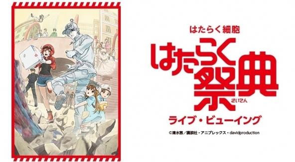 TVアニメ『はたらく細胞』初の大型イベント『はたらく祭典』を全国の映画館へ生中継 ライブ・ビューイングの実施が決定