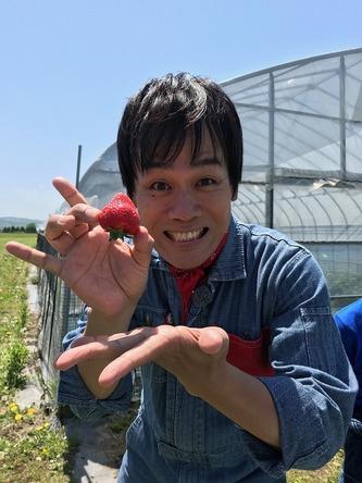 『あぐり王国北海道NEXT』来年デビューのイチゴはコレ! (c)HBC