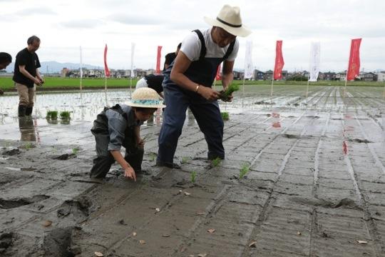 歌舞伎俳優 市川海老蔵さん、勸玄(かんげん)さんが 親子で田植えに参加!新潟県知事が新潟米「新之助」の田んぼを案内するイベントを開催しました