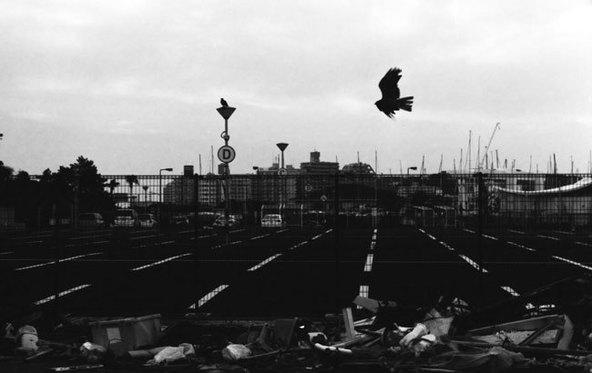 「黒い旋回」 撮影:田島貴男