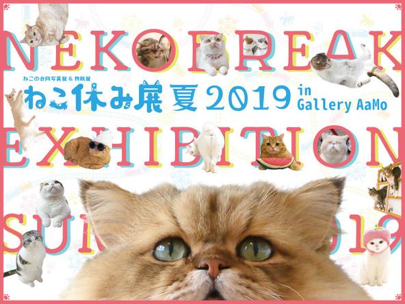 人気猫の写真展&物販展『ねこ休み展 夏 2019 in Gallery AaMo』 夏休みに東京ドームシティで開催!