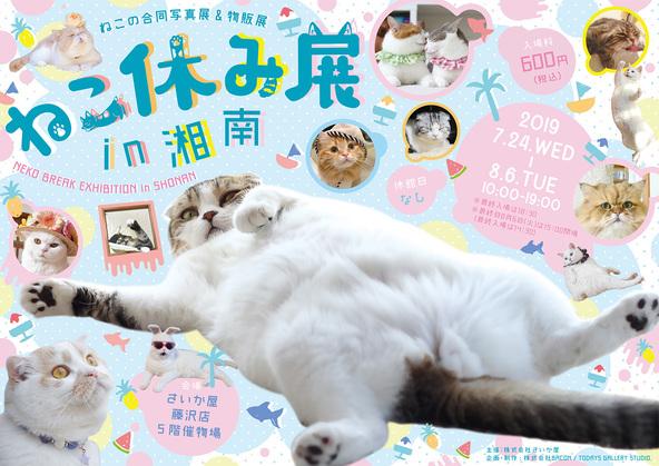 猫の合同写真展&物販展『ねこ休み展 in 湘南』が開催 大型フォトスポットや謎解きイベントなど盛り沢山!