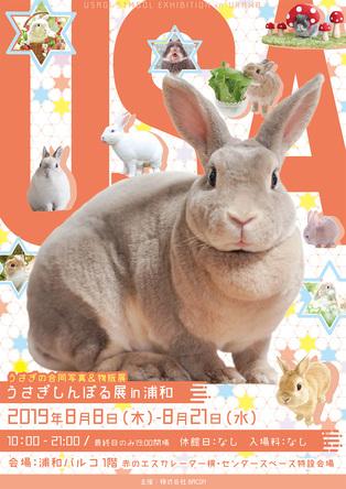 うさぎの合同写真展&物販展『うさぎしんぼる展』が浦和で開催 謎解きイベントやワークショップも