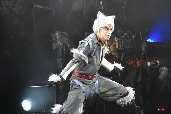 佐奈宏紀らが繰り広げる、熱き犬(おとこ)たちの戦い 舞台『銀牙 -流れ星 銀-』~絆編~ゲネプロレポート