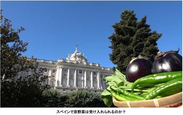 「世界に挑戦する日本人」への応援プロジェクト  新番組『ちょっと日本を出てみます』 (1)
