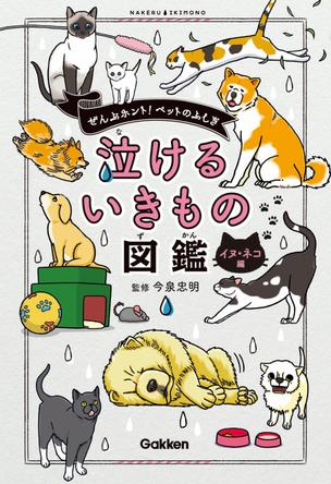 """知ってた? ネコのあなたへの親心? イヌのあくびの理由? イヌ・ネコ・ペットの""""泣ける生態""""が明らかに! 飼い主もビックリの知られざるエピソード満載の『泣けるいきもの図鑑 イヌ・ネコ編』学研より発売! (1)"""