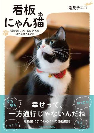 「愛する人」との繋がりを猫の視点で綴った心温まるフォト・ブック「看板にゃん猫」10月18日発売! (1)