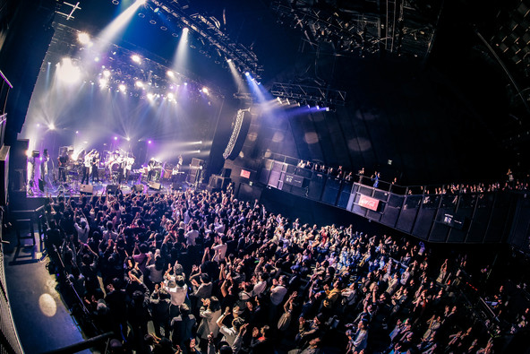 LEO今井、ZAZEN BOYS・前野健太・呂布カルマを迎えたツーマンツアーファイナル公演終了!ワンマンライブ「TOKYO LIGHTS 2020」開催も決定