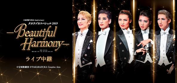 『タカラヅカスペシャル2019-Beautiful Harmony-』ライブ中継開催決定!! (1)