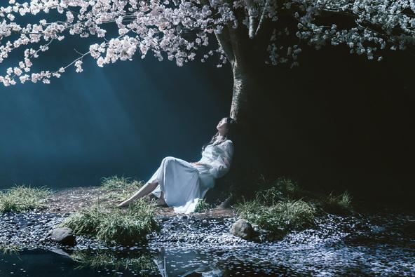 Aimer、新曲「春はゆく」ミュージックビデオ&アートワーク公開!劇場版「Fate/stay night [Heaven's Feel]」III.spring song主題歌