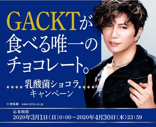 「GACKTが食べる唯一のチョコレート。乳酸菌ショコラキャンペーン」 (1)