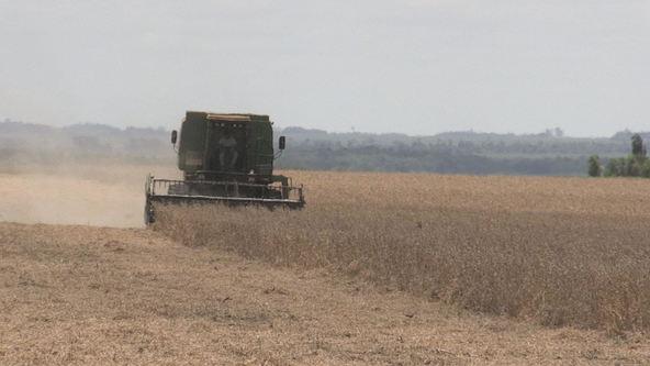 『あぐり王国北海道NEXT』パラグアイでは今が大豆収穫の最盛期 (c)HBC