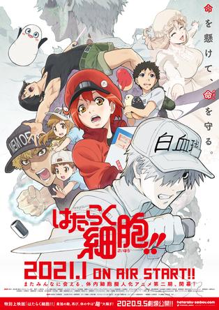 2021年1月放送開始「はたらく細胞!!」(第2期)PV・KV公開!さらに特別上映版が9月5日(土)より劇場上映開始! (1)