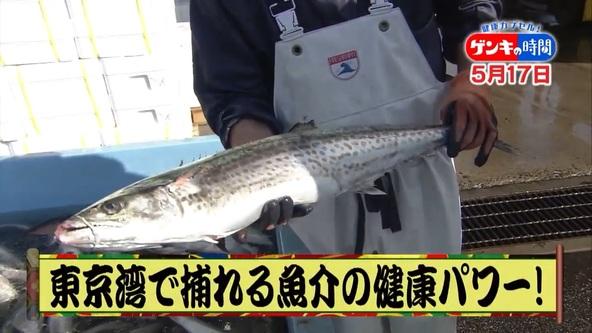 病気に負けない身体づくり!東京湾で水揚げの「魚介類」健康パワーに迫る!さらに効果倍増レシピもご紹介!『健康カプセル!ゲンキの時間』 (1)