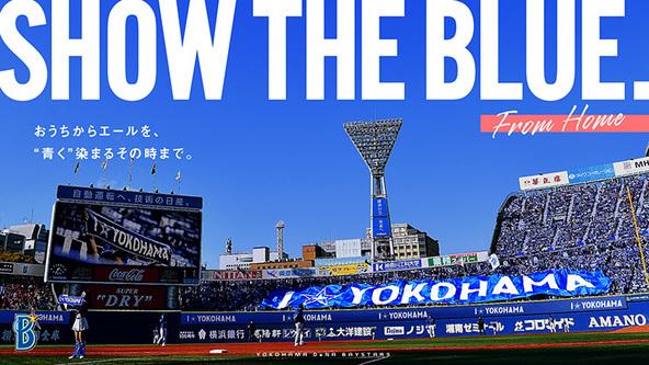 横浜スタジアムでの試合開催時に、ライトスタンドで掲出されるビッグフラッグ用の写真を募集 (C)YDB