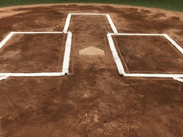 プロ野球の公式戦が6月19日(金)に開幕する
