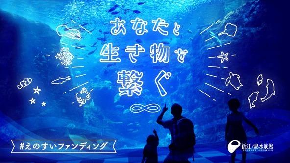 新江ノ島水族館「えのすいファンディング」