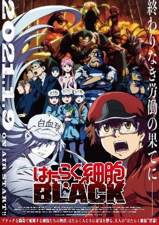 TVアニメ「はたらく細胞BLACK」第2弾PV公開!さらに、放送情報・主題歌情報・第2弾キービジュアル追加キャスト情報も合わせて解禁!