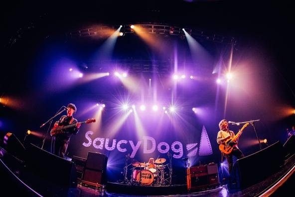 "Saucy Dog (c)撮影=日吉""JP""純平"