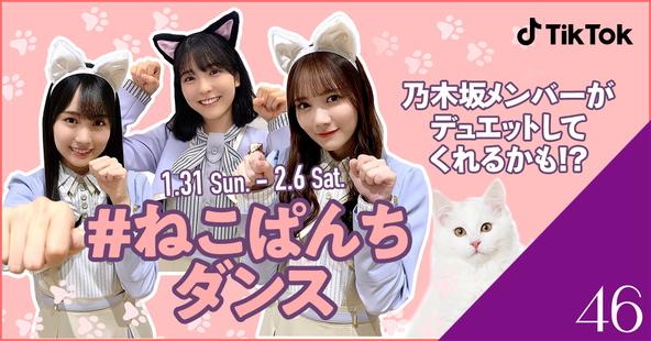 TikTok、乃木坂46と「#ねこぱんちダンス」チャレンジ開催! (1)