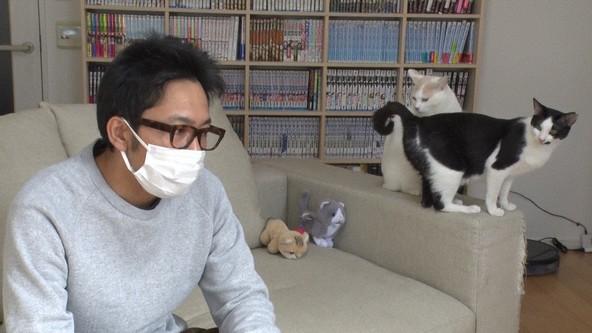 "『I LOVE みんなのどうぶつ園』「保護ネコ""まさき""」サンシャイン池崎(1) (c)NTV"