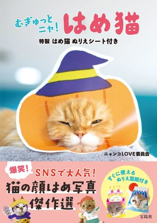 【新刊情報】猫が顔だし看板で大変身!「はめ猫」写真集が発売