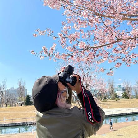 """蜷川実花「今日も世界は美しい」多数の写真で圧倒的な""""色彩美""""を披露、桜を撮影できる喜びを語るブログが「LINE BLOG」4月の月間MVPを受賞!"""